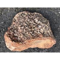 Jaspis Leopard surowy bryły
