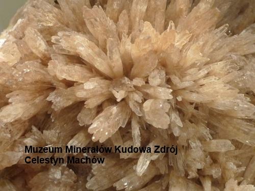Celestyn, Machów, Muzeum Minerałów Kudowa Zdrój