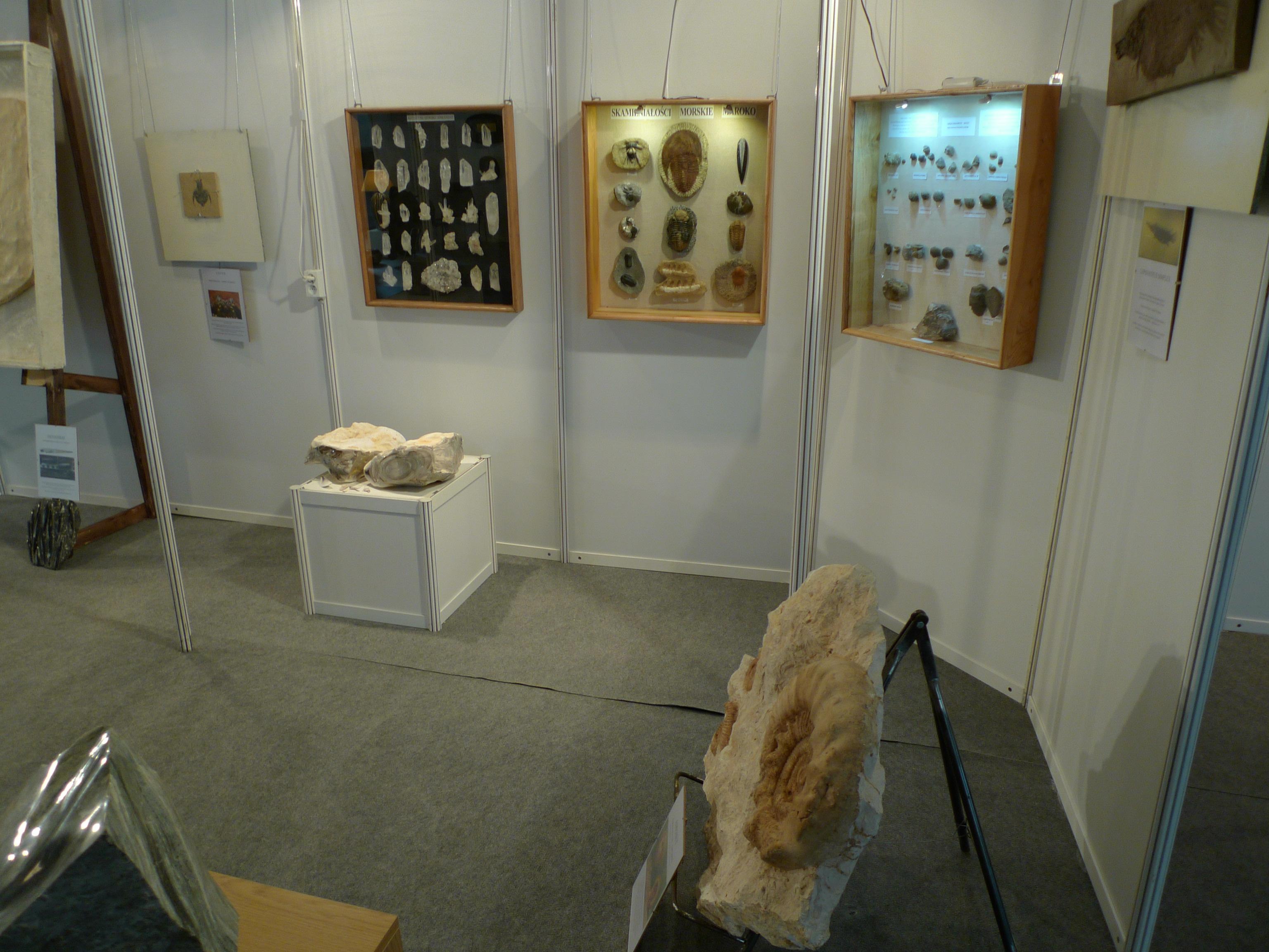 Wystawa na Targach Bursztynu. Gdańsk 2012