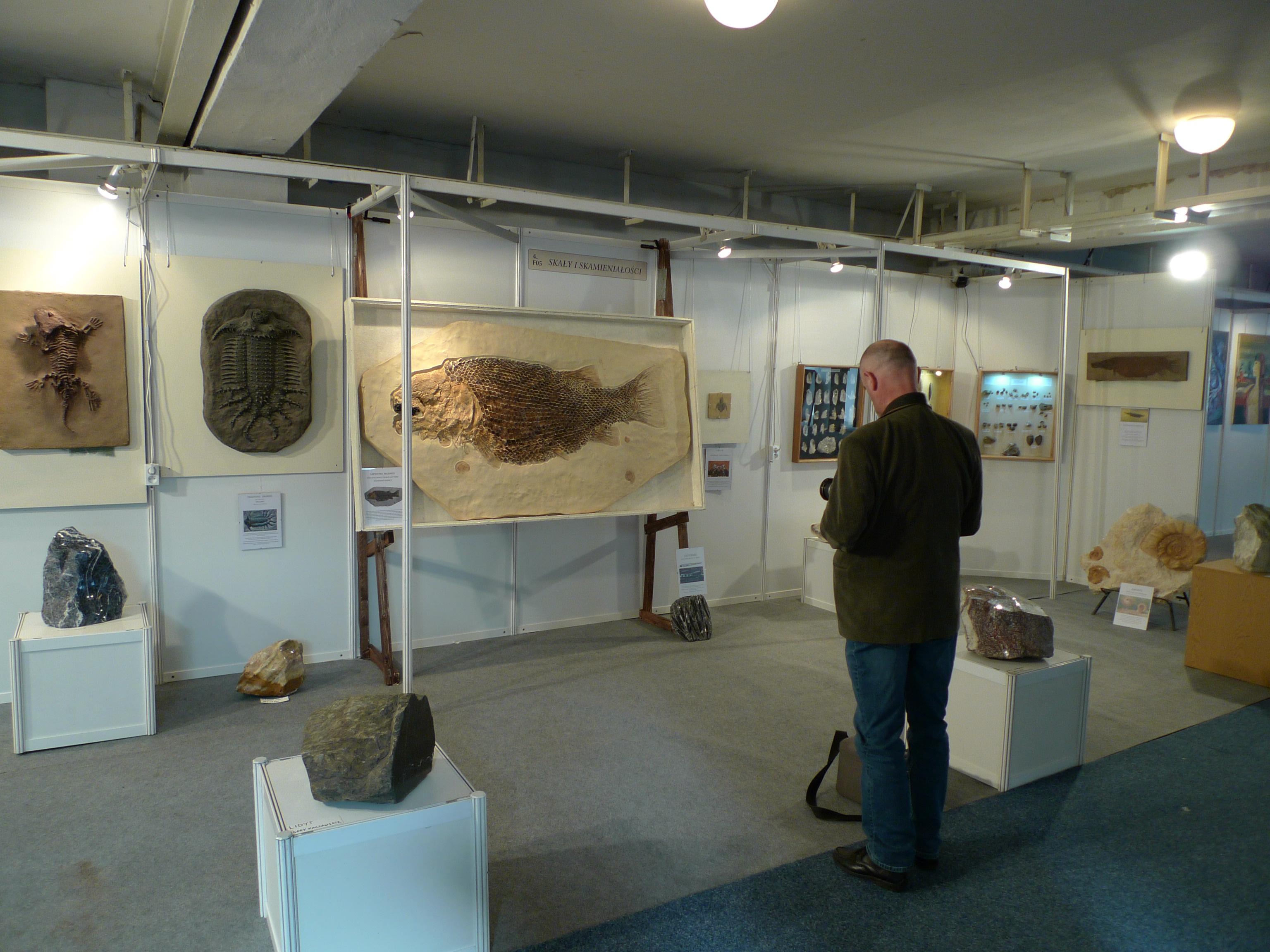 Wystawa na Targach Bursztynu, Gdańsk 2012